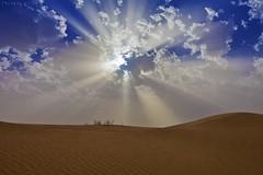 Sunlight (TARIQ-M) Tags: sunset sky cloud sun sunlight texture sahara sunrise landscape sand waves pattern desert ripple patterns dunes wave ripples rays شمس riyadh saudiarabia بر الصحراء canoneos5d الرياض سماء غيوم صحراء goldensand رمال سحب اشعة سحابة رمل طعس كانون المملكةالعربيةالسعودية غيمة الرمل خطوط العاذرية صحاري canonef1635mmf28liiusm الثمامة canoneos5dmarkii نفود الرمال كثبان براري تموجات اشعةالشمس تموج الرمالالذهبية mygearandme نفد الجتادرية