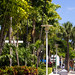 Lincoln Road Mall_4