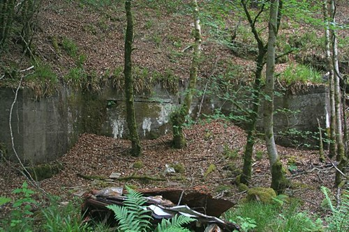 WWII training gun emplacement? Inveraray woods