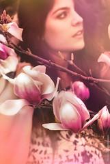 Wilted rose (NROmil) Tags: pink portrait flores flower color flickr retrato rosa bella mirada belleza dulce sutileza modgirls beautyshoots