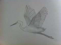 .. (Saravinci ~) Tags: pencil drawing