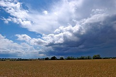 Tuddenham Landscape (DaveJC90) Tags: road blue light shadow summer sky cloud sun sunlight detail tree green field rain dark landscape grey suffolk view bright path sunny sharp crop footpath dull sharpness tuddenham