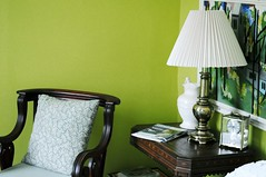 green walls (anna hricko) Tags: wood lamp 50mm chair farm greenwalls centralpa vsco nikond300