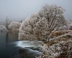 Alexandra Hoar Frosts (Ian@NZFlickr) Tags: winter newzealand fog bravo frost day central alexandra otago butchers hoar gully fruitlands