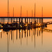 Golden Isles Marina 5