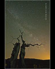 Mi trozo de cielo. Explore. (Francisco J. Prez.) Tags: naturaleza nature night spain negro estrellas nocturnas armona vialctea sigma1020mm pentaxart pentaxk5 franciscojprez