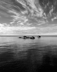 #summer #korshamn #lyngdal #sørlandet #norway #ocean #sea #sky #clouds #rocks #nowind #stillwater #fujifilm #xpro2 #blackandwhite #monochrome #acros (Steinskog) Tags: instagramapp square squareformat iphoneography uploaded:by=instagram