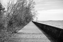 The Walk (freshwater2006) Tags: canada d7100 nikon toronto ontario canad ca torontoislands lake lago