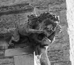 Deerhurst gargoyle (ewan.osullivan) Tags: bw church blackandwhite monochrome gargoyle sculpture deerhurst gloucestershire deerhurstchurch