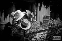 chapeau_d_yvoire (conikon.pictures) Tags: lman yvoire laclman haute savoie suisse france montagne savoiemontblanc