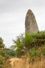 Le menhir de la Roche Longue (Oric1) Tags: roche longue 70dcanon france franceoric1 oric1 quintin sigma1835mmf18art breizh bretagne brittany ctesdarmor landscape menhir mgalithe paysage rochelongue mgalithisme nolithique