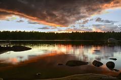 Nightfall (Lindaw9) Tags: shanty bay westarmoflakenipissing sunset evening treeline rocks dock shoreline sky