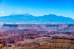 Canyonlands National Park (thecheetahexpress) Tags: canyonlands national park utah moab red rocks mountains canyon canyons mountain desert