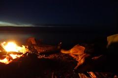 DSC04047 (The Man-Machine) Tags: accidentalart renaissance dog lake fire water campfire