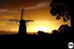 Sunset at Sint Antoniusmolen (Frankhuizen Photography) Tags: sunset sint antoniusmolen laar netherlands 2016 wind mill windmill molen windmolen weert zonsopgang colours colors landscape landschap fotografie photography st warm