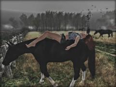 Cowboy take me away. (Morrigan Outlander) Tags: secondlife virtual virtualworld avatar redhead cowgirl country horse field luanesworld dream pretty sexy ipiccy sl girl woman female maitreya catwa argrace addams fog animal outside glamaffair swallow lwposes