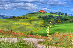 Red Farmhouse On the Hilltop (pixtopic) Tags: redfarmhouse pienza tuscany italy sunlight overcast fields grass bushes trees wildflowers countryroad dirtroad landscape photography daylight photo sky clouds meadows
