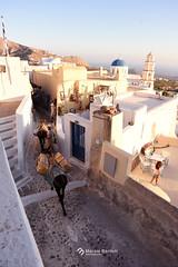 _Donkeys in Santorini (marziabertelli) Tags: santorini sun sunset donkey asini stradine street bianca summer 2016 grecia greek fira e blu casette vicoli