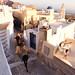 _Donkeys in Santorini