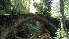 Bridge in mount Pelion - 2 (afilitos) Tags: greece magnesia thessaly mount pelion stone bridge tsagarada