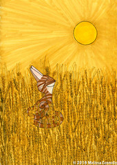 Gold (September 6, 2016) (Melissa's Kitties) Tags: gold cat fieldsofgold sting catart art drawing illustration illustrationfriday barley