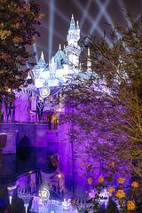 Sleeping Beauty Castle And Trees-2 (cstout21) Tags: disneyland sleepingbeautycastle diamond celebration hdr canon60d canon california ca