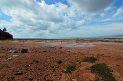 In The Distance (TheNovaScotian1991) Tags: burntcoathead park hantscounty novascotia maritimes canada lowtide minasbasin bayoffundy sky clouds mud rocks pebbles seafloor seaweed nikond3200 tokina1116mmdxii cliff tree water ultrawideangle people person human