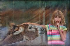 Gimme Some (jta1950) Tags: kid kids child children enfant girl fille portrait littlegirl younggirl texture person people cute animal