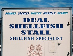 Alive Alive O' - Deal, Kent (jcbkk1956) Tags: minoltaa5 minolta analog rangefinder film 35mm agfa200 deal kent sign seafood shellfish rokkor 45mmf28