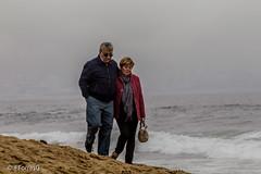 (Francisca Torres Gonzlez) Tags: via del mar chile playa beach sea waves olas pjaros birds personas flores viaje wanderlust