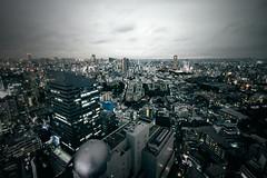 Above Shibuya (Eddy+) Tags: canon 7d 1022mm usm landscape wideangle