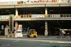 The Tsukiji Market (NINA KOB) Tags: sigma dp3 merrill foveon tsukiji tokyo