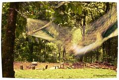 Rock a bye baby (trdastidar) Tags: longexposure india children nikon raw child kerala swing hammock wayanad kalpetta meppadi d80 lanternstay