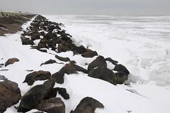 winter op de Oostvaardersdijk; kruiend ijs op het IJsselmeer,28 december 2010 (wally nelemans) Tags: winter holland december nederland 2010 oostvaardersdijk kruiendijsijsselmeer