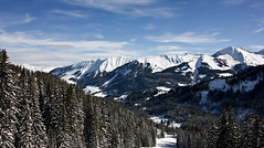 Alp Winter Panorama (Nataraj Metz) Tags: schnee winter panorama mountain snow alps forest canon austria sterreich europa europe berge valley alpen wald tal gebirge vorarlberg kleinwalsertal riezlern ifen hoherifen allgueralpen alpmountains eos550d eosrebelt2i tamron18270mmf3563diiivcpzd
