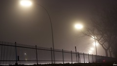 #158 Foggy Elbchaussee (flickranet) Tags: street longexposure morning light urban mist misty fog night clouds canon fence germany deutschland 50mm dawn lights iso100 licht haze nebel nightshot cloudy nacht streetlights tripod hamburg foggy silhouettes hazy zaun fluss f8 bume baum ef50mmf18ii elbe cloudysky clouded twillight elbufer elbchaussee nebelig bedeckt yabbadabbadoo canonef50mmf18ii bremslicht anbruch 60d canon60d canonef50mm118ii dammerung aste canoneos60d atmosphare dammern flickranet foggyelbchaussee nebelsilhouetten fogsilhouettes