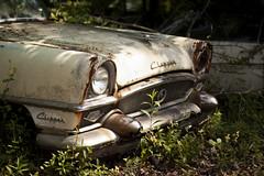 clippers. (stevenbley) Tags: cars rust antiques junkyard packard boonton