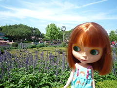 Percy at Epcot