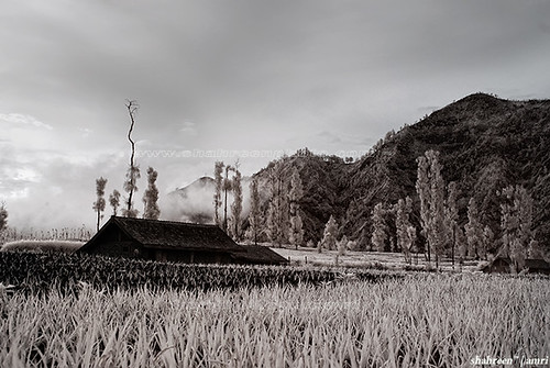 Mystical Village (IR + B&W)