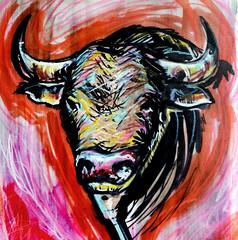 CMYK BULL (Groenewold Moreno) Tags: portrait animal illustration design acrylic hand head handmade drawing retrato bull bulls made cabeza canson expressionism mano ma