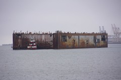 Pier 50 Drydock Relocates 6-2012 (daver6sf@yahoo.com) Tags: sanfranciscobay drydock pier50 portofsanfrancico weststartugs
