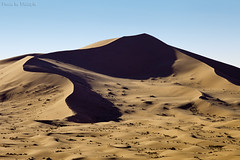 Desert Dunes (TARIQ-M) Tags: pictures shadow texture sahara lens landscape photo sand waves pattern desert image photos ripple patterns dunes picture wave images ripples riyadh saudiarabia      canoneos5d    goldensand    canonef70200mmf4lusm           dahna  canoneos5dmarkii          aldahna