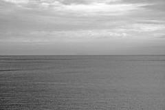 copia Immagine 193 (nicolaborzi) Tags: light sea italy sun seagulls sparkles silver sushi island dawn boat eyes mediterraneo barca italia sailing ship alba seagull nave tuscany toscana sole gabbiani gabbiano mediterraneansea isola capraia chinesepoetry silversea arcipelagotoscano chineseliterature sudongpo navigazione yinhaijingwei tuscanislands