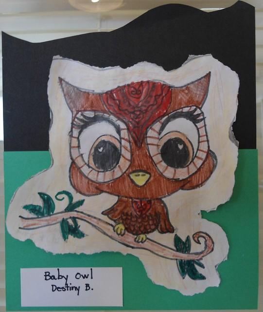 artshow owls trl timberlandregionallibrary artinthelibrary