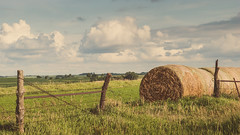 farm life (laughlinc) Tags: sky field clouds fence farm country iowa hay bales bale imogene 1755mmf28 nikond80 thechallengefactory laughlinc