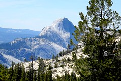The Majesty of Yosemite (Stanley Zimny) Tags: california travel mountain tree nature rock yosemite halfdome olmsteadpoint