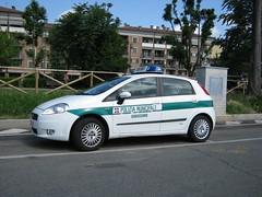 Fiat Grande Punto (TAPS91) Tags: grande punto fiat sei ore polizia municipale comune coppa orbassano