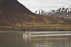 from lafsfjrur (Fjola Dogg) Tags: canon harbor boat iceland islandia sland 2012 50d lafsfjrur canon50d fjoladogg fjladgg