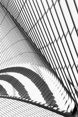 (marzellluz) Tags: abstract lines reflections belgium belgique gare curves belgi symmetry trainstation calatrava liege luik achitecture santiagocalatrava architectuur postmodernism collonade treinstation postmodernarchitecture ligeguillemins marcelbruinshoofd graphicarchitecture stationluikguillemins
