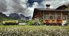 (Cristina Birri) Tags: fornidisopra udine friuli dolomiti casa house chalet clouds montagne mountains nuvole fiori margherite flowers prato carnia